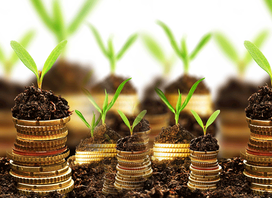 Ekonomicky oprávnené náklady (2020)